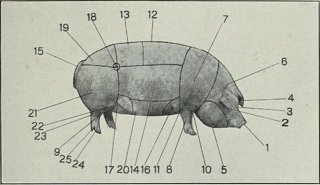 Ham Hock versus Ham Shank